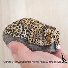 Leopard painted on natural shape stone.  She/He is such a fluffy & beauty :)  Stone size: 95x50x55mm  石の上に寝そべるヒョウ、完成しました。  美しい子だと思います(*^_^*)  サイズ:95x50x55mm  #stoneart #stonepainting #rockart #rockpainting #drawing #painting #art #fineart #akie #chick #wildlife #leopard #panther #豹 #ヒョウ