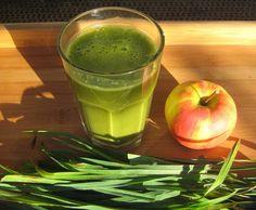 Rezept Wildgrassaft Vegan + Rohkost von Rohköstler - Rezept der Kategorie Getränke