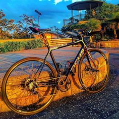 #cycling #queenslandcycling #outsideisfree #wymtm #cyclingadeventure #igerscycling #stravaproveit #stravaphoto #strava #fromwhereiride #howiroll #instapic #picoftheday  #chaingangbrisbane #ridemore #brisbanecycling #cyclingbrisbane #focusstraya #cayo #cayodisc #mtcoottha by roydraydge