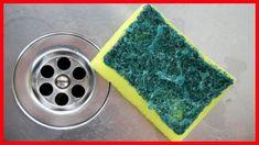 Cómo Eliminar en Forma Efectiva las Bacterias de las Esponjas