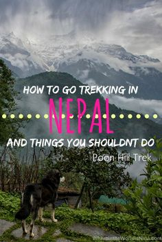 The Poon Hill Trek in the Annapurna region of the Himalayas is one of Nepal's most amazing treks!
