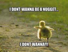 Ahhhhhhhhhhh that's actually really sad chicken nuggets will never taste the same...
