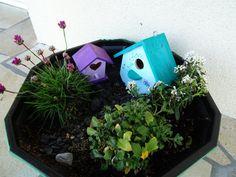 DSC00102 Invite, Invitations, Nature, Bird, Outdoor Decor, Plants, Home Decor, Gardens, Naturaleza