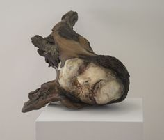 "Michelle Dickson ""Neither Mine Nor Yours, 3"" Plaster, driftwood, and seedpods 14 x 8 x 13"" 2015"