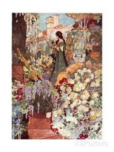The Sensitive Plant, Robinson Giclee Print