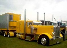 Flat top Peterbilt with matching Reefer, Chicken Lights, and Chrome