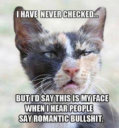 haha...#animals #humor #funny #lol #captions