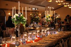 Entire wedding party all at head table for turquoise blue and coral wedding; Picture by tomK Photography
