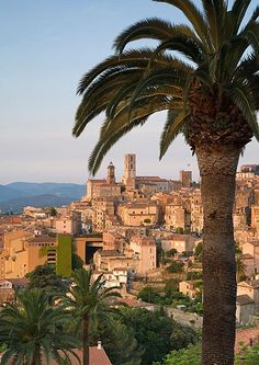 size: Photographic Print: Poster of Grasse, Provence, France by Doug Pearson : Artists Grasse France, La Provence France, Places To Travel, Places To See, Valensole, Ville France, Voyage Europe, French Countryside, French Riviera