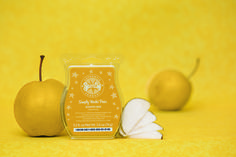 The Scentsy Scentrend for 2014 – Simply Nashi Pear. Shop directly https://ivelyssepowers.scentsy.us/  If you have questions please contact ivelyssepowers@gmail.com