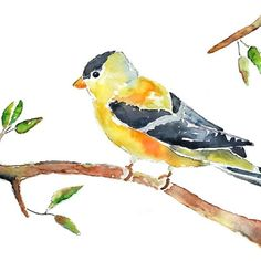 Pretty watercolor art in many colors/animals for nursery walls