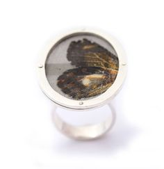 Butterfly Oval Silver Ring   Fly Karoline   Unique Jewellery   Forages.co.uk