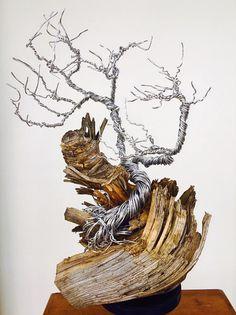 Aluminum Wire Tree on Pine Tree Knot
