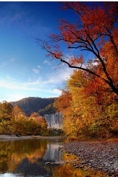 Buffalo River at Ponca, Arkansas.  Ponca is an unincorporated community in Newton County.  Ponca is located on Arkansas Highway 43, 10 miles west of Jasper.  Photo by Paul Martin