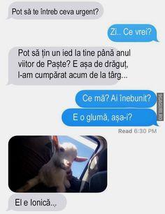 Funny Text Messages, Creepypasta, Funny Moments, Cringe, Funny Images, Funny Texts, Haha, Jokes, Humor