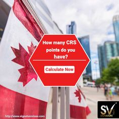 41 Best Immigration & Visa Consultants images in 2019