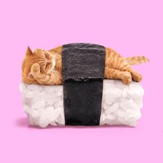 Colorful and Surreal Pop Art Mashups of Everyday Objects, Food, and Animals