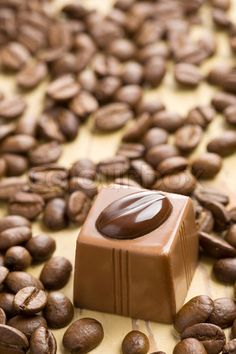 mocca chocolate praline