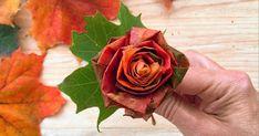 De finaste rosorna skapar du själv av löv som du hittar ute i naturen. Diy For Kids, Crafts For Kids, Raskog, Paint Colors For Living Room, Nature Crafts, Interior Design Living Room, Handicraft, Creative Art, Diy And Crafts