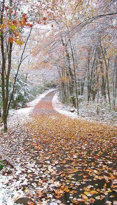 when autumn and winter collide