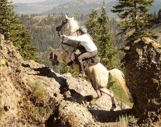 Endurance riding     YES