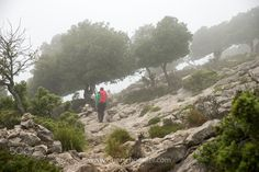 Hiking in Mallorca, Spain Online Shipping, Order Prints, Photographers, Spain, Hiking, Mountains, Facebook, Instagram, Nature