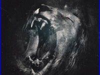 Lion Roar Wallpaper 358 High Quality