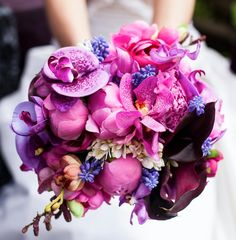 fab purples