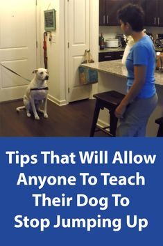 dog obedience training tips Dog Training Classes, Dog Training Techniques, Training Your Puppy, Dog Training Tips, Potty Training, Training Online, Training Schedule, Labrador Retriever, Golden Retriever
