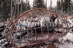 A Cree hunter helped by his wife contructing framework of a traditional winter tent. N. Quebec, Canada.: Canada, Cree: Arctic & Antarctic photographs, pictures & images from Bryan & Cherry Alexander Photography.
