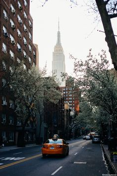 now-youre-cool: Spring in New York