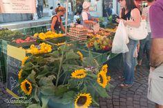 Lausanne Market , Centre ville Mittwoch und Samstag 07.00h - 14.30h