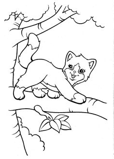 Top 20 Free Printable Cat Coloring Pages For Kids Coloring Pets