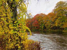 Ashuelot River in West Swanzey, New Hampshire. Paul Chandler October 2017.