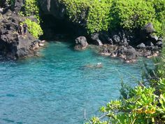 The Road to Hana--Maui