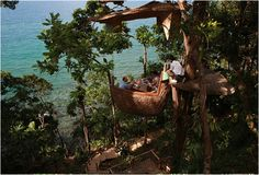 """Soneva Kiri by Six Senses is a """"six star"""" eco-resort located in Koh Kood, an island almost inhabited in Thailand. This dream location offers a 29 Villa Resort and several private residences, but the main atraction has to be the 16ft suspended tree dining pod, Soneva Kiri's exclusive eating experience"""