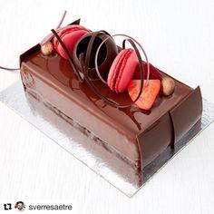 Chocolate cremuxe and strawberry and kombucha gelé