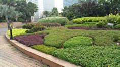 Bkc. Entry Garden.
