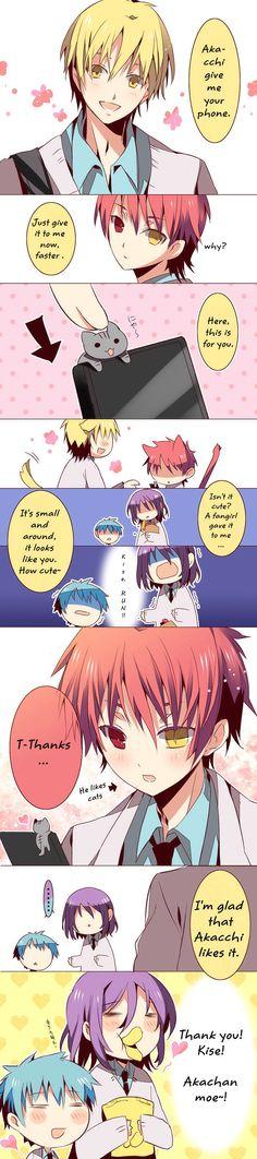 cute and funny kuroko no basket comic! phone/ kise/ Akashi/ kuroko/ murasakibara/ kitty