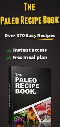 Over 370 Easy Paleo Recipes!