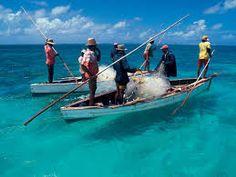 Risultati immagini per mauritius