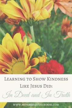 Learning to Show Kindness Like Jesus Did: In Deed and In Truth