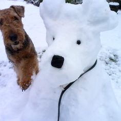 Wyatt and Frosty