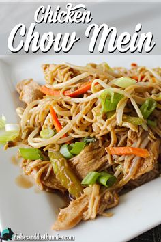 Easy Chicken Chow Mein from dishesanddustbunnies.com