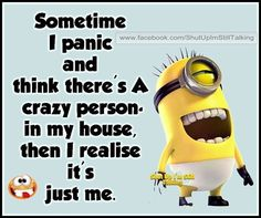 Sometimes I panic and think there's a crazy person in my house, then I realize it's just me. - minion