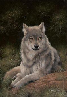 Carl Whitfield - British Wildlife Artist