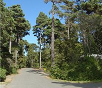 Pomo RV Park and Campground Home Page ~ Welcome to Pomo RV Park and Campground! Our 17 acre premiere park is located a few minutes from the beautiful Mendocino Coast in Fort Bragg.