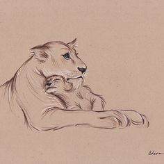 """Guardian"" - Lioness and Cub prisma pencil drawing"