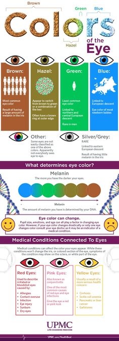 Infographic: Colors of the Eye