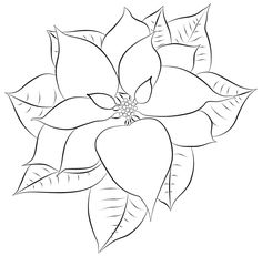 Free Digital Stamps for Cards | poinsettia free digital stamp
